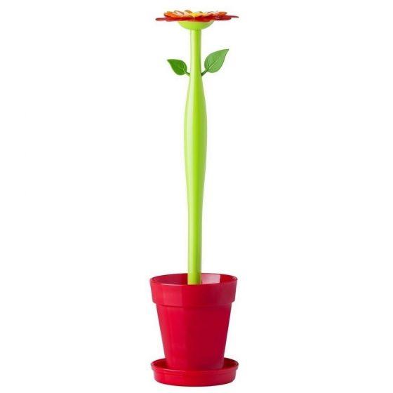 Escobillero flor